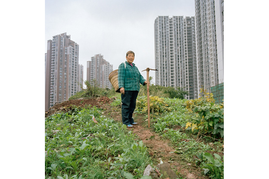 Fan Anshu moved to Chongqing from Fuling, a city of one million two hours east of Chongqing's Central Business District. Her home and land were confiscated to make way for a highway. She receives RMB 700 (U.S.$111) a month in compensation. To help feed her family, she now grows vegetables on a muddy hillside next to a giant construction site in Jiangbei.