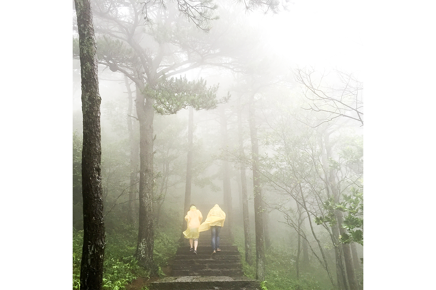 A couple makes its way uphill through wind and fog on Lushan, a mountain in Jiangxi province that has played host to cultural and political figures for centuries. Photo by Sim Chi Yin @chiyin_sim