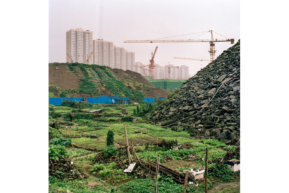 Improvised temporary farmland fills the gaps between construction rubble in a new Jiangbei development.