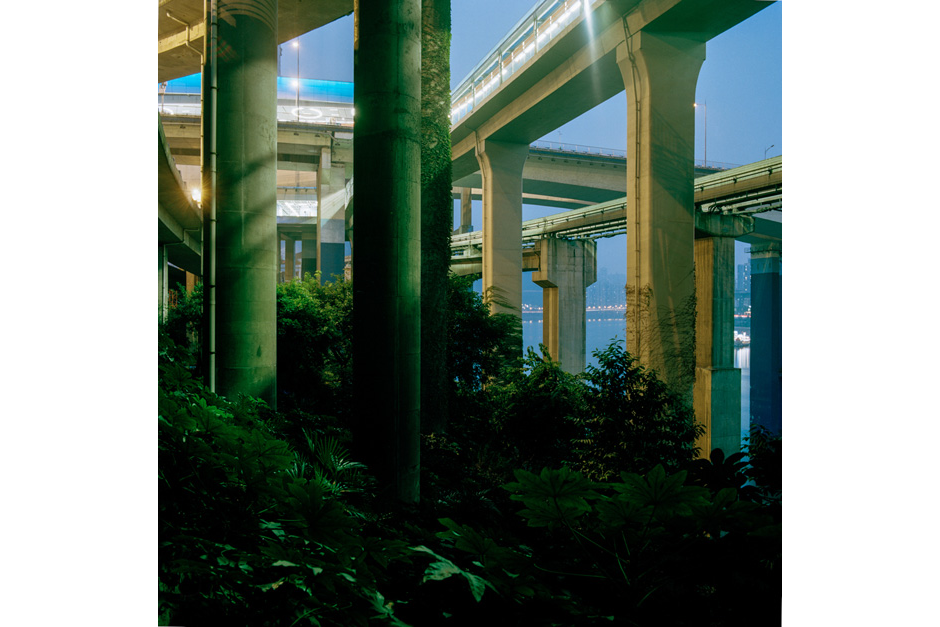 On the side of the Jialing river, under the Yu'ao bridge, the vegetation reaches upward in an apparent attempt to climb from the backfill and overtake the highway structure from below.