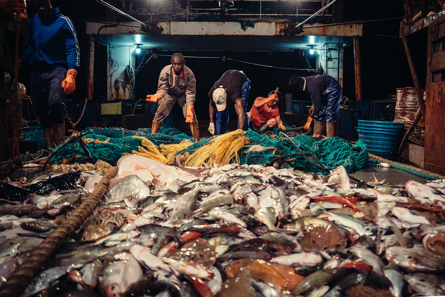 Crew members clean and sort the catch after the nets have been retrieved on Captain Xu's ship, July 22, 2016. This process happens every two or three hours, 24 hours a day. According to Xu, on a good day his crew can net up to 10,000 kg of fish, but on a bad day there might only be 4,000-5,000 kg. This trip's catch has been on the lower end.