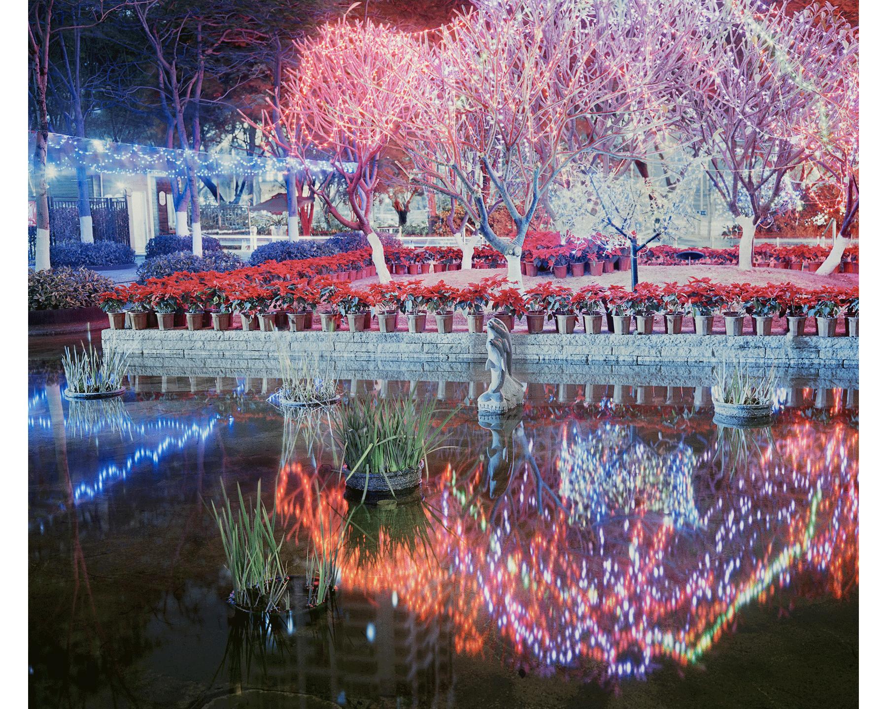 Shenzhen, Guangdong province, 2015.