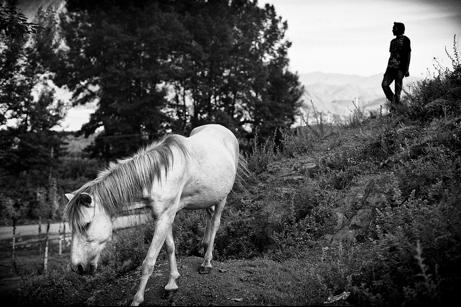 Su Na Dorje, 26, herds his horses from the hills back home. During the two months of winter, when the fields are left fallow, Su Na heads out with his horses to neighboring Sichuan province and chops firewood to provide for the next year's needs. Aguwa, Yunnan, China.