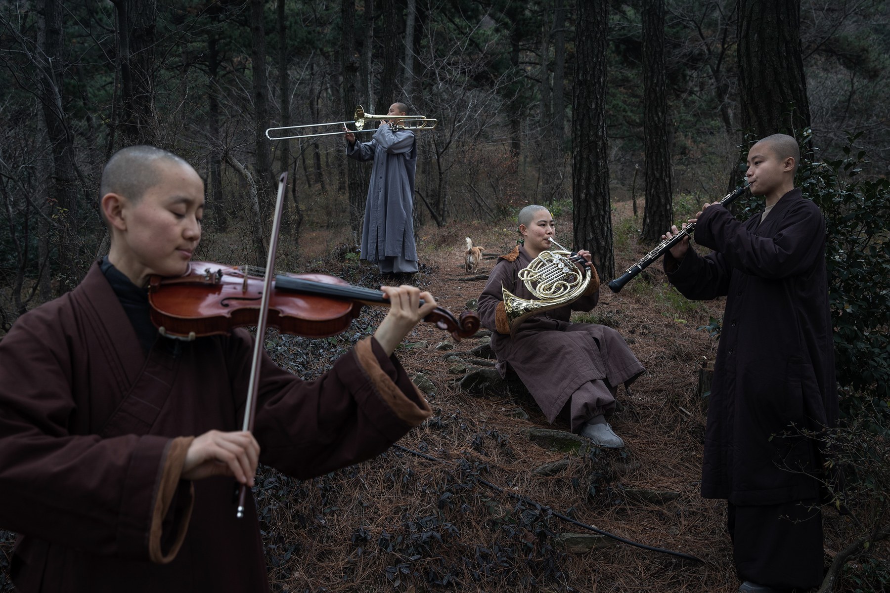 "A rehearsal at the Tiantai Temple in Huanggang, Hubei province, November 22. Religious practice at Tiantai blends Buddhism with Western classical music. In 2008, Master Wule, a former musician, founded the temple's orchestra ""Guangxuan""––whose members number more than 40––to preach Buddhism and Zen philosophy through music. (Wang He/Getty Images)"
