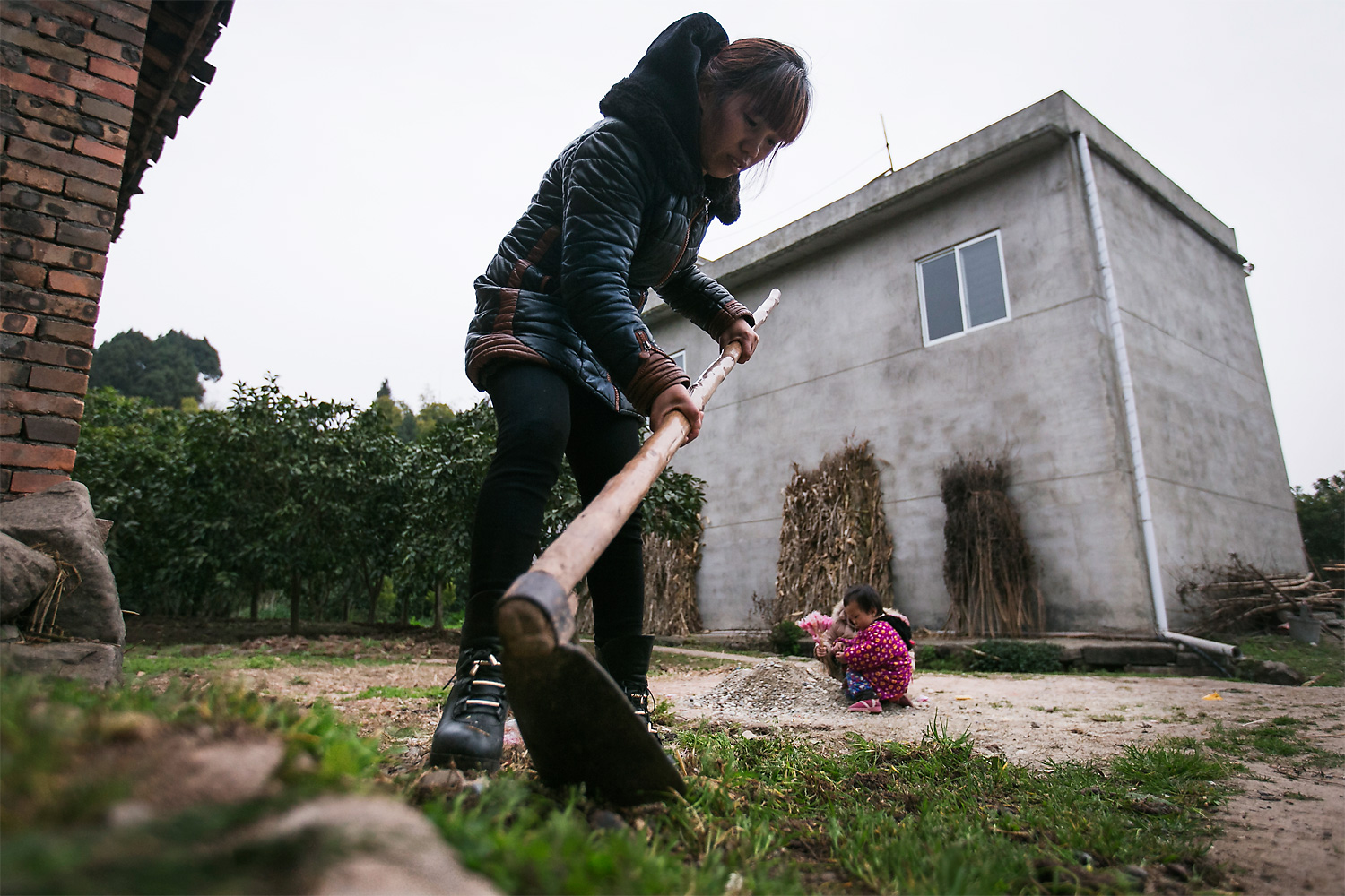 Ning Xianfang pulls weeds in front of her home, Longjing village, March 5, 2015. Li Mingjin's mother has a seriously hunched back, so she can't help much with chores.