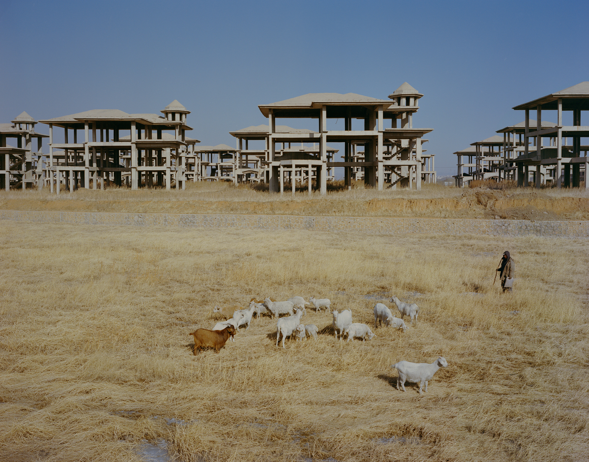 Lan Xianquan, 43, herds goats near an unfinished five-star hotel in Fuxin. Construction was abandoned five years ago because of the lack of follow-up investment. Lan worked for Haizhou Mine until it shut down in 2005 and has practiced goat husbandry in the years since.
